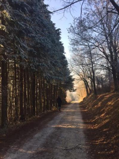 Chemin 2