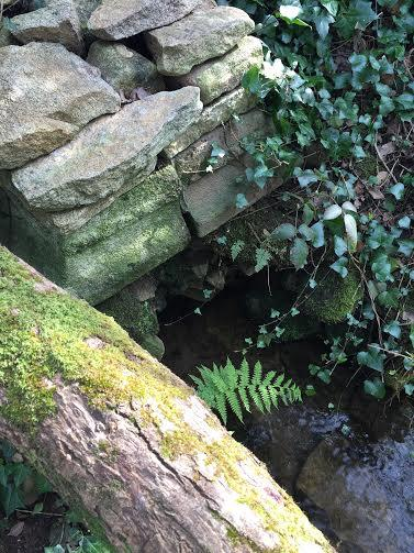 Chemin de la fontaine sacree9