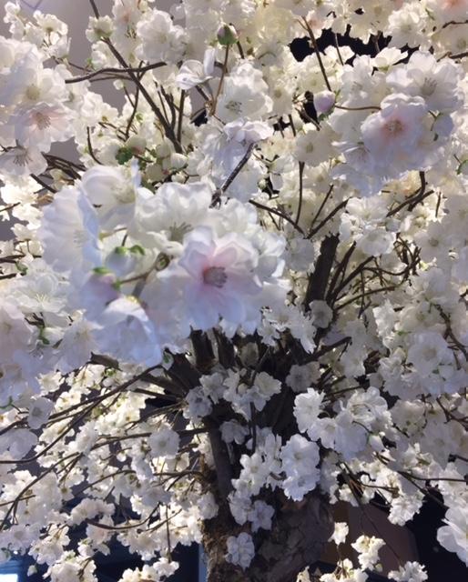 Faux printemps