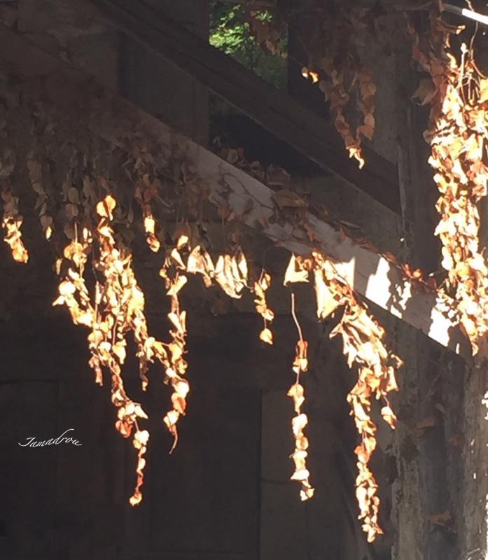 Guirlande d automne