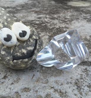 La grenouille au coeur de cristal