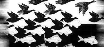 Mot poisson oiseau