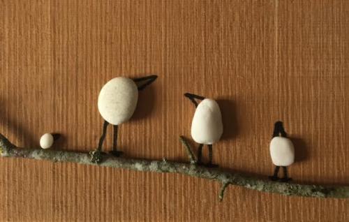Oiseaux cailloux3