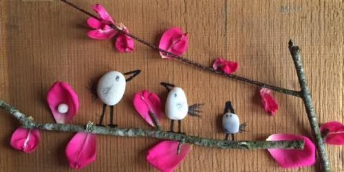 Oiseaux cailloux4