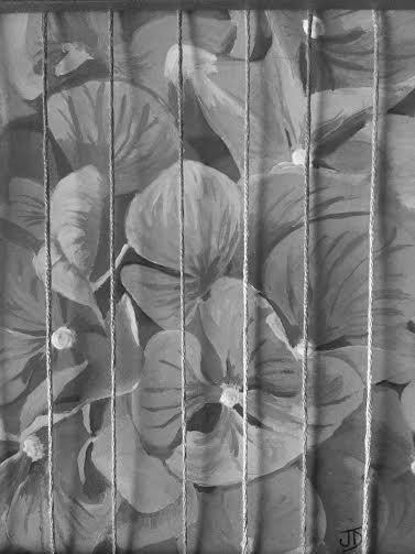 Pluie hortensias