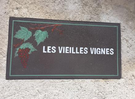 Terre de la vigne2